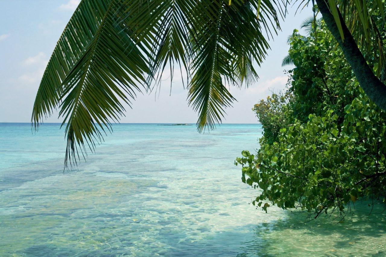 Discover Maldives from New Delhi